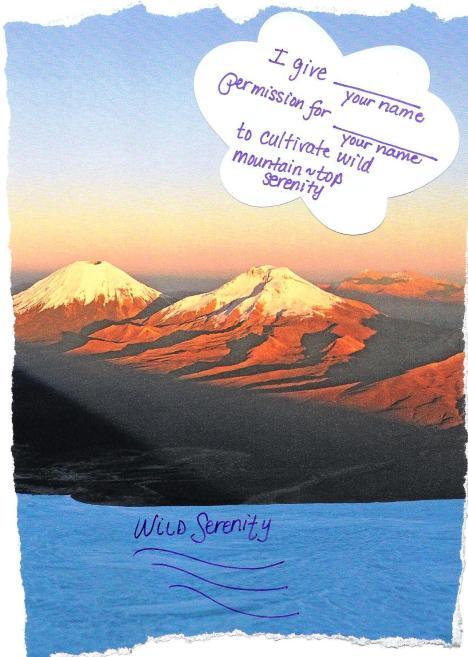 serenity permission slip