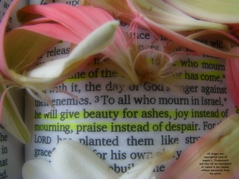 Isaiah 61:3