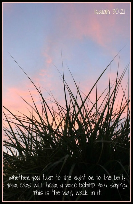 Isaiah 3021 sunset grass