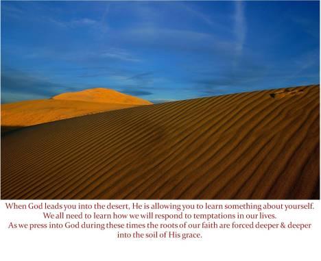 leading into the desert
