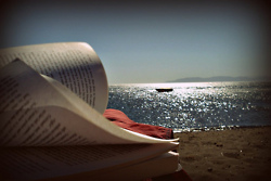 book by the sea