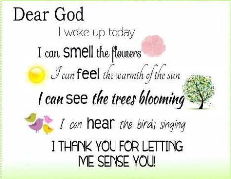 Dear God 5 Senses