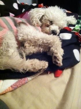 ruby sleeping