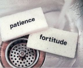 patience and fortitude sponge