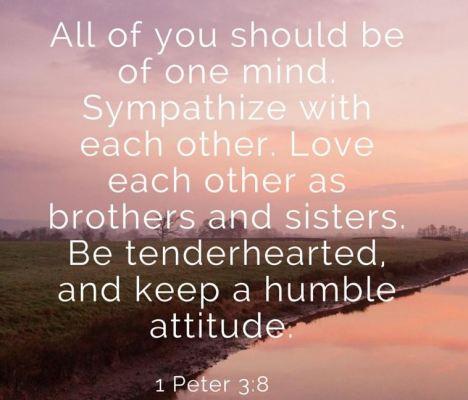 1 Peter 3:3