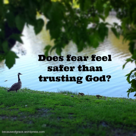 DoesFearFeelSafer Than Trusting God